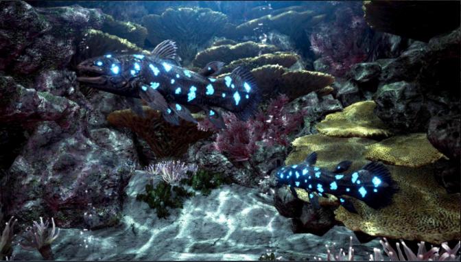 孤高 の 魚類 調査 員